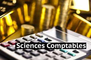 Sciences Comptables